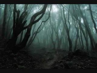 Vak Karapetian (In Irons) -Dark Forest