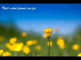 Helen Reddy - That's what friends are for