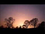 Tripswitch - Deer Park ( Seb Dhajje Remix From Zurich Remix )