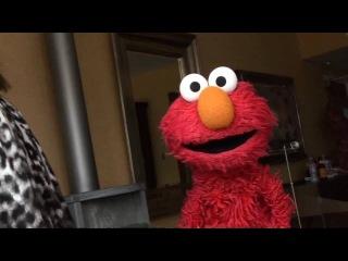Elmo performs Beyoncé's Single Ladies!