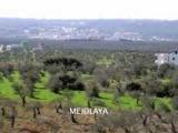 lebanon baladi habibi , song by zaki nassif