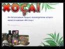 MXI Вся правда о шоколаде Xocai