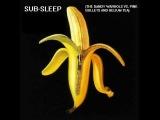 Sub-Sleep (The Dandy Warhols Vs. Pink Bullets and Helium Tea)