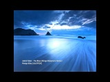 Jakob Faber - The Blue (Shingo Nakamura Remix)ALLEY0281080p