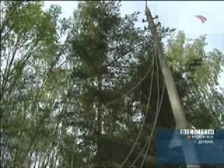 Ураган 26 июня 2005 года в Дубне Московская область.avi