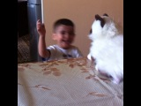 leyla_9508 video