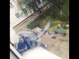 kolesnikova_ronika video