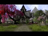 By the Divines! Top 8 Reasons to be Interested in ESO.