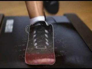 Сушилка для обуви Тимсон