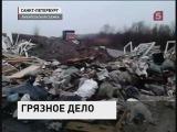 Горы мусора каждое утро вынуждены разгребать жители военного городка под Петербургом