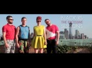Black XS - The Excessive Sessions - Scissor Sisters | Teaser
