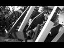Bodybuilding Motivation - Go Hard Or Go Home 2013