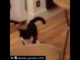 ashera_yuliya video