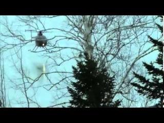 Спасение скользящих на льду оленей ветром от вертолета))