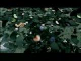 DJ Tatana ft. Jael - Always on my Mind