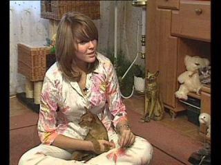Представляем породу: абиссинские кошки / Abyssinian cats