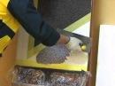 мозаичная штукатурка.wmv