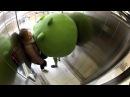 Angry Birds e Nokia Lumia assaltano gli ascensori russi
