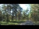 Фрик  Freak 2011 (Короткометражный фильм  short film 480p)