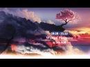 60Min Euphoric Hardstyle Mix 2013! (320kbs)