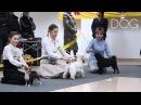 Выставка собак Россия г Омск декабрь 2011г