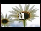 L Art Mystique - Le Jardin Secret (Original Mix)