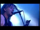 VADER - Carnal (Live in Warsaw)