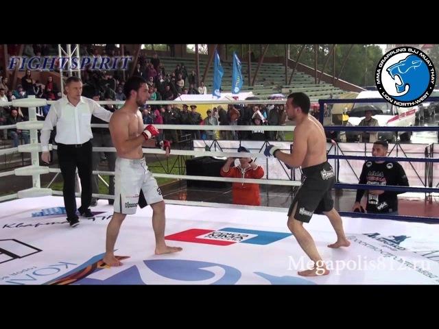 Lions Fights 2. Илья Овечкин (Спарта,Череповец) против Тимура Гагаева (MMA Viena, Австрия)