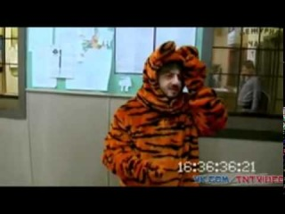 Александр Радионович Барадач   выпуск 14 Тигра попрыгун