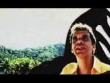 Celso Fonseca - Meu Samba Torto (2003)
