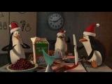 Madagaskar Pingwiny Boże Narodzenie
