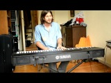 Florida Whistle Piano Cover by Beranger