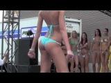 Bikini & Booty Shaking Contest