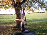 Yoga Swing Instruction How To Part 4 of 6 Handstand