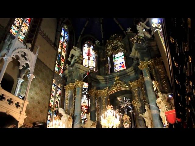 Rzymsko katolicka Katedra we Lwowie