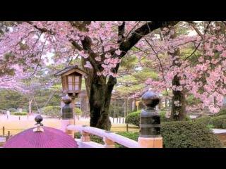 ЯПОНИЯ.японская музыка    красиво.avi