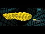 La Sportiva Mountain Running presents: MorphoDynamic Technology (ENG)