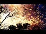 Traktion - The Near Distant Future (Klrx Remix)