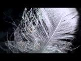 Sleep Warm - Stacey Kent