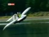 Летающая лодка Руди Химана - WIG (wing in ground effective vehicle)