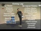 What is Taekwondo Kick, What is Karate Kicking, What is Martial Arts Kicks, How To Kick