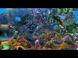 Видео к мультфильму «Риф 3D» (2012): Трейлер (дублированный)