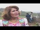 Alicia Delgado - El cielo esta nublado HD