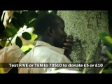 The deadly effects of malaria | Red Nose Day 2013