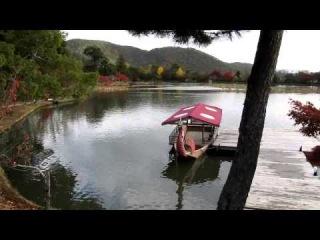 Путешествие по Японии - Киото - часть 3