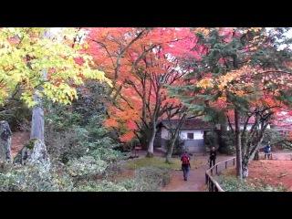 Путешествие по Японии - Киото - часть 2