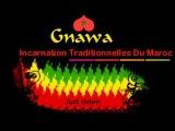 Gnawa - La musique Du monde [MAROC]