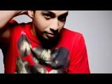 Sato Goldschlag Feat. Wynter Gordon - Mr Mister (Laidback Luke Remix) - DJ Mix RIP