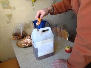 Как сделать энзимы для почвы и очистки дома от жёсткой химии, а также для очистки воды от органических и химических загрязнений