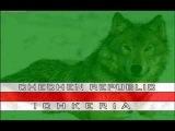 Chechen rap hamas